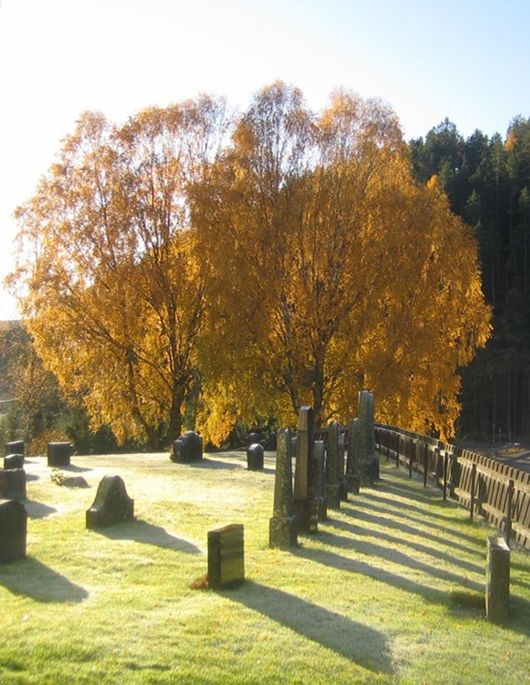 Leter du etter slektens gravlagte?